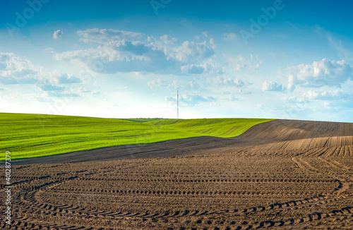 Fototapeta plowed field and winter wheat in the hilly terrain with cloudly sky of Ukraine obraz