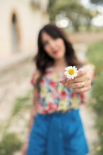Unrecognizable Female In Casual Clothing Passing Small White Delicate Chamomile With Yellow Stigma And Tiny White Petals In Daytime On Blurred Background