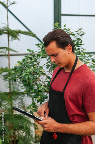 Side view of focused man with brown hair using tablet while working in greenhouse with plants at daytime Wall mural