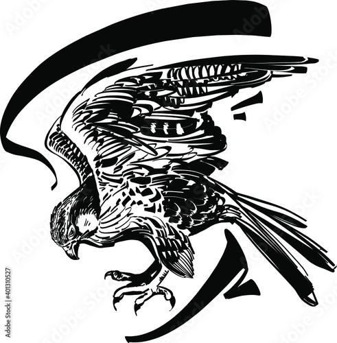Canvas-taulu The vector sketch of the hawk is flying