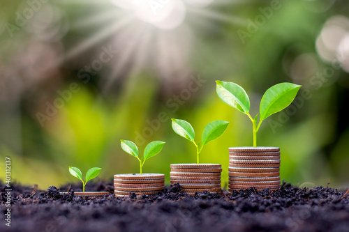 Canvas Print Grow early on coins and soil ideas for saving money, financial growth and profit from business investments