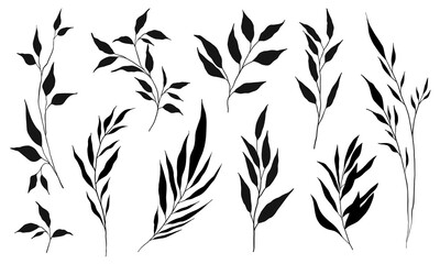 Set of silhouette branches with leaf and stem in modern style. Vector leaves isolated on white background. Hand drawn decorative botanical elements.