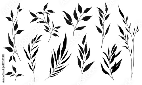 Canvastavla Set of silhouette branches with leaf and stem in modern style