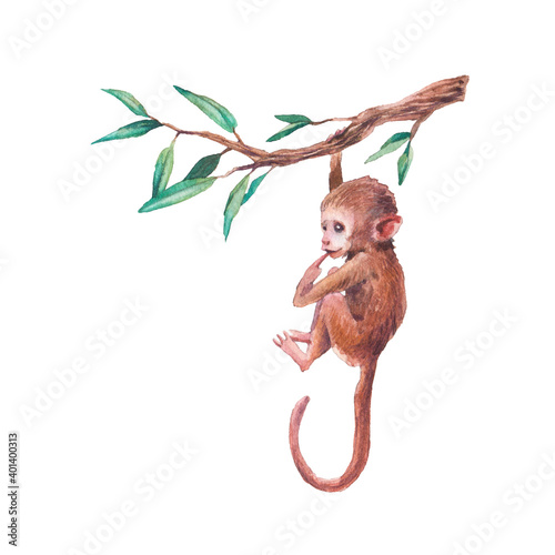 Watercolor baby chimp illustration Wallpaper Mural