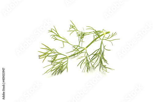 Fototapeta Closeup of dill leaf on white background