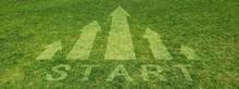 芝に浮かび上がる上向きの矢印