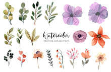 Watercolor Floral Vector Collection Set Elements