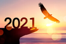 2021 New Year Concept With Eagle Bird Flying On Sunset Sky Background At Top Of Mountain.