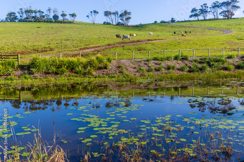 Country farm land and reflections in Byron bay area, New South Wales, Australia Fototapeta