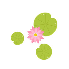 Lily Pad Pattern. Wallpaper. Free Space For Text. Lotus Flower.