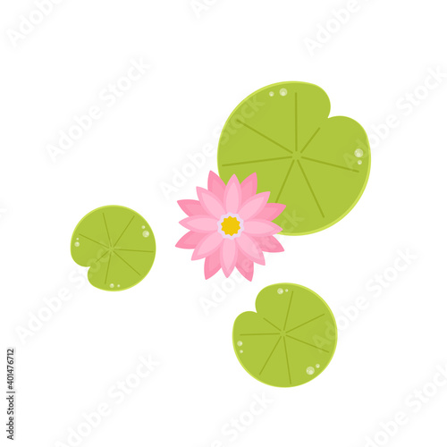 Valokuvatapetti Lily pad pattern. wallpaper. free space for text. Lotus flower.