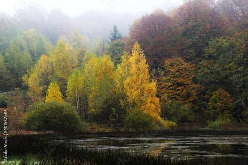 Misty autumn lake. #401537566