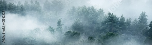 Fototapeta Gauja river valley and evergreen pine forest in a clouds of thick mysterious fog at sunrise. Sigulda, Latvia. Breathtaking panoramic aerial view. Pure nature, environmental conservation, ecotourism obraz