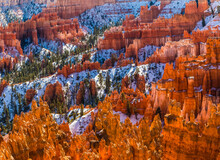 Winter Sunrise On The Hoodoos Of Silent City From Sunset Point, Bryce Canyon National Park, Utah, USA