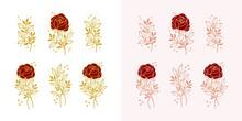 Set Of Hand Drawn Botanical Rose Flower And Floral Leaf Branch Line Art Elements