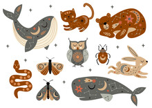 Set Of Isolated Celestial Animals