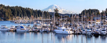 Marina In Gig Harbor Washington With Sail And Fishing Boats, Mt Rainier In The Background