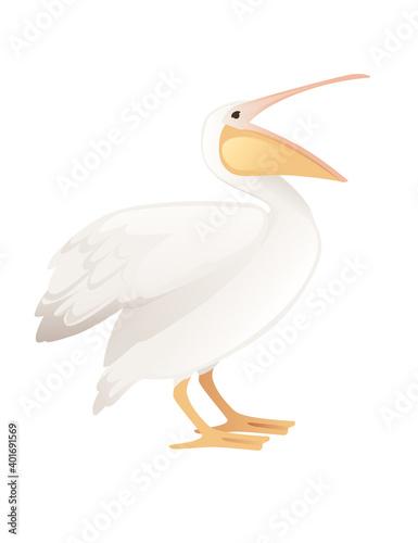 Leinwand Poster Pelican genus large water bird cartoon animal design big white bird with orange