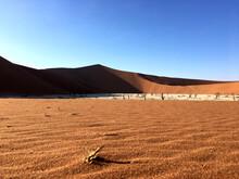 Unique Desert Landscape In Sossusvlei, Namibia