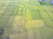 An Aerial View Of Cultivated Agricultural Fields
