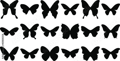 Fototapeta Set of butterflies isolated.  Butterfly Silhouettes. Butterfly Template obraz