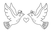 Vector Cute Black And White Doves Pair. Loving Couple Illustration. Love Relationship Or Family Concept. Romantic Birds Isolated On White Background. Funny Valentine's Day Line Characters..