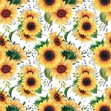 Watercolor Flowers Sunflower Patterns, Summer Sunflowers Digital Paper Pack, Seamless Patterns