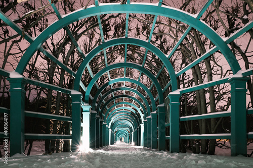 Fototapeta Wooden arcade entwined with trees