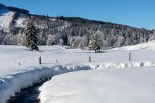 Winter In Sumava National Park, Horska Kvilda Village, Czechia
