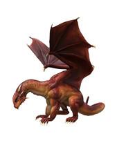 3d Ilustration Red Dragon Wyvern