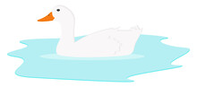 White Duck In The Water, Illustration, Vector On A White Background.