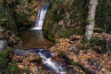 A Waterfall In Autumn In The Black Forest, Germany. A Mystic Waterfall In The Middle Of A Forest With Green Mossy Stones And Orange Leaves.