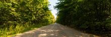 A Rural Dirt Road Through A Forest