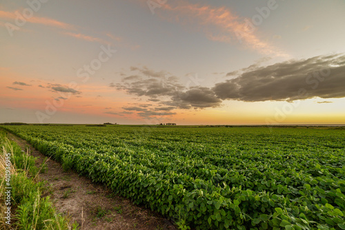 Fototapeta A beautiful dramatic cloudscape over a cultivated agricultural field in Uruguay, Juan Lacaze, Colonia obraz