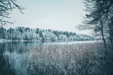 Lake In Winter Time. Picture Taken In Europe, Latvia.