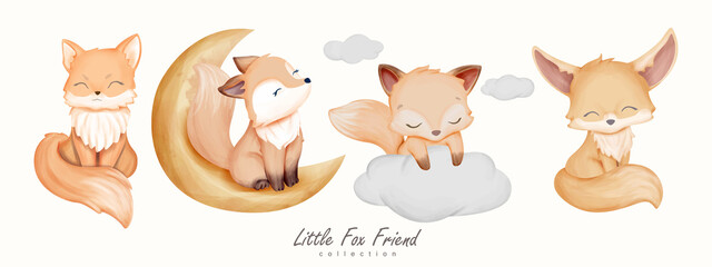 Little Fox Friend Animal Collection