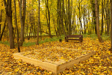 Bench, Podium And Autumn Leaves In The Park On The Ecological Trail.