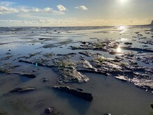 Pett Level Beach At Sunset. With Pool Of Sea Ocean Water And Rocks In Foreground. Winchelsea Beach Meets The Cliffs A Petrified Forest Visible At Low Tide, On The South Coast Of England East Sussex UK