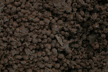 Old Wall Texture Background Brown With Stones And Bubbles Of Expanded Clay