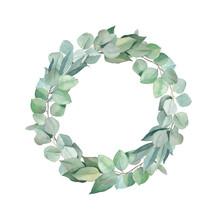 Green Wreath Hand Drawn Watercolor Silver Dollar Eucalyptus
