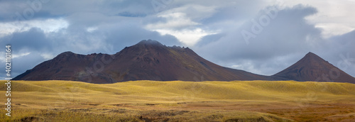 Fototapeta Panoramic landscape in autumn with volcanoes and yellow grass in central Iceland
