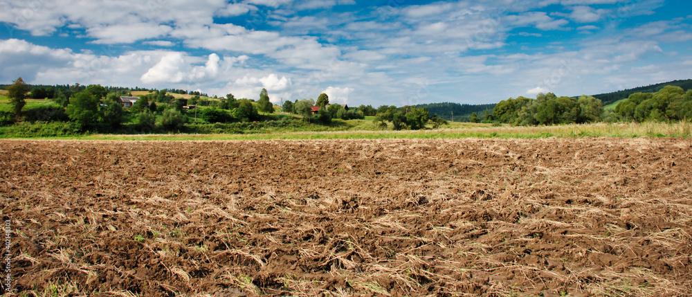 Fototapeta Widok na pole upraw na wsi