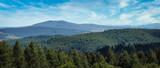 Fototapeta  - Widok na Bieszczady ponad koronami drzew