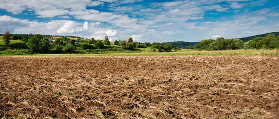Widok na pole upraw na wsi