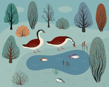 Two Wild Geese On A Forest Lake. Autumn Forest And Lake With Fish.