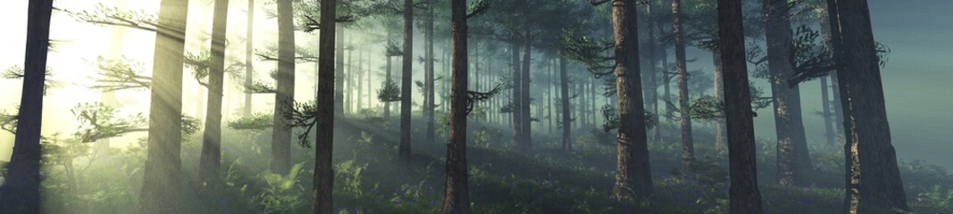 Forest in the morning in a fog in the sun, trees in a haze of light, glowing fog among the trees, 3D rendering