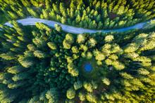Aerial View Over Mountain Road Going Through Pine Forest With Small Lake. Pokljuka, Slovenia