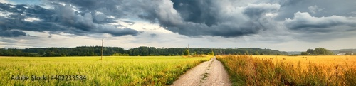 Obraz A dirt road through the agricultural field and forest under cumulus clouds after the rain, golden sunlight. Dramatic cloudscape. Idyllic rural landscape. Picturesque panoramic scenery - fototapety do salonu