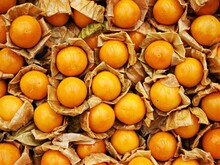 Closeup Yellow Peruvian Groundcherry ,berry Seeds ,golden Berry Gigante Fruits For Background ,macro Image And Detail