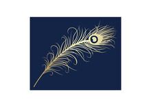 Peacock Feather, Wedding Card Design, Royal India